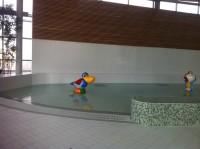 Bassin de piscine avec sol et mur en  Grès Emaillé 11.5 x 24 cm, banc en mosaïque 2 x 2 cm